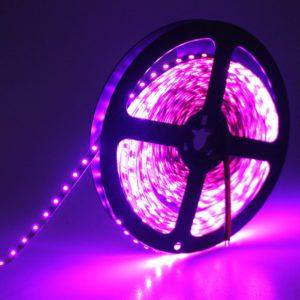 Pink 5 Meter SMD 3528 LED Flexible Strip Tape 300 LED Light For Home Decor, Automobile, Indoor & Outdoor Lighting Rope + Free 12 Volt DC LED Driver